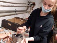 1. výroba keramiky.jpg