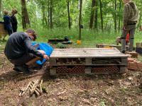 9. stavění hmyzího domova.JPG